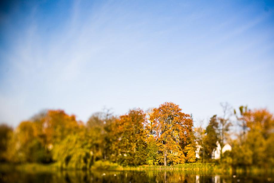 Autumn_TS_09-4