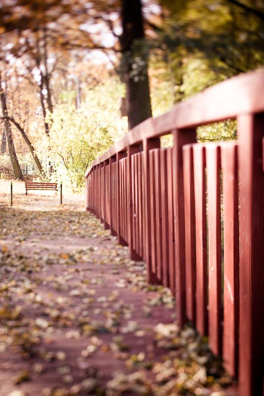 autumn_ts_06