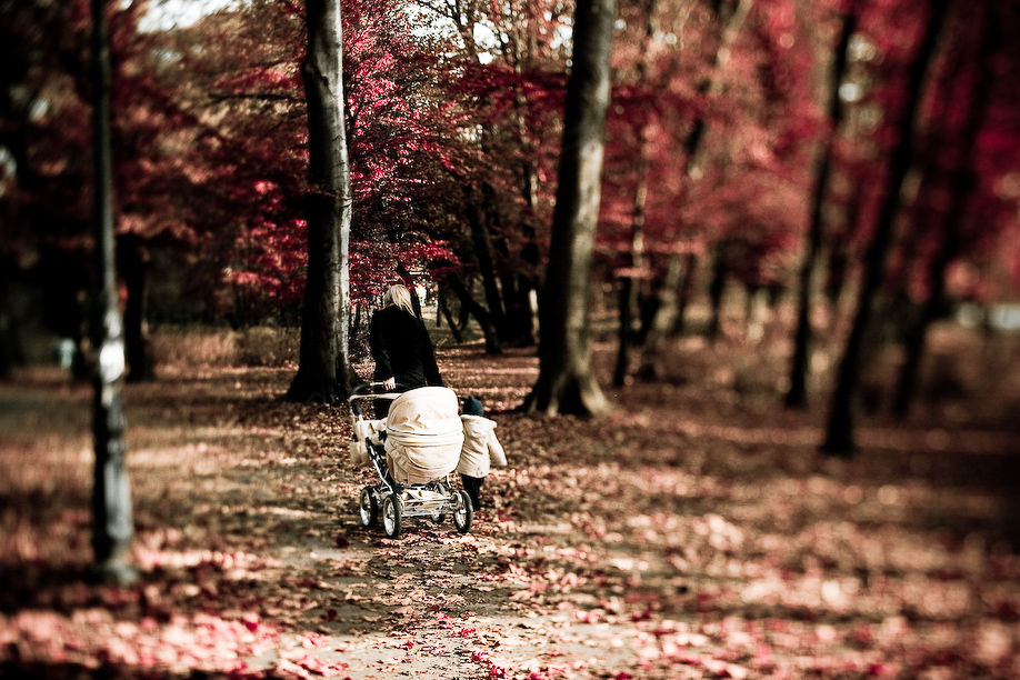 autumn_ts_11