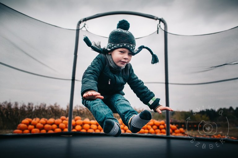 Farma Dyniowa Powsin Pumpkin Path